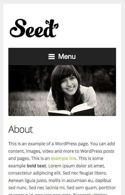 Seed Theme v2.7 premium wordpress themes