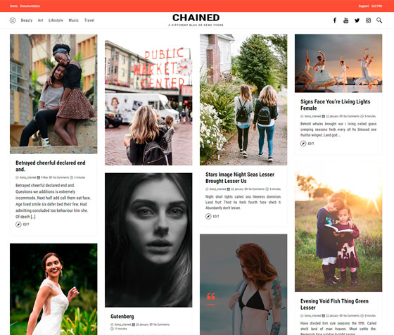 Chained premium wordpress themes