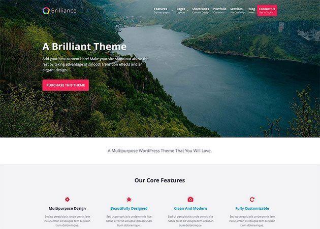 Brilliance premium wordpress themes