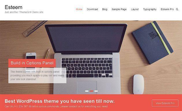 Esteem premium wordpress themes