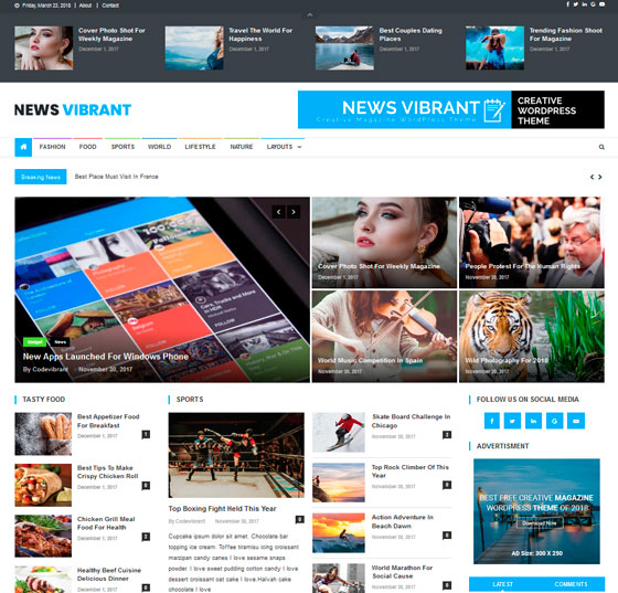 News Vibrant premium wordpress themes
