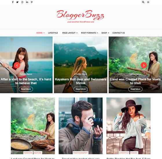Blogger Buzz premium wordpress themes