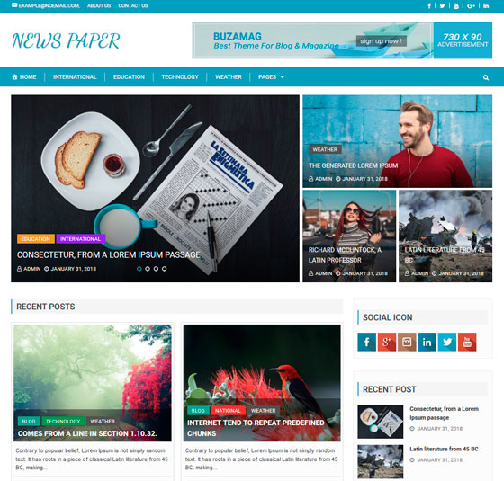 Buzmag premium wordpress themes