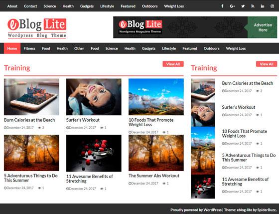 eBlog Lite premium wordpress themes
