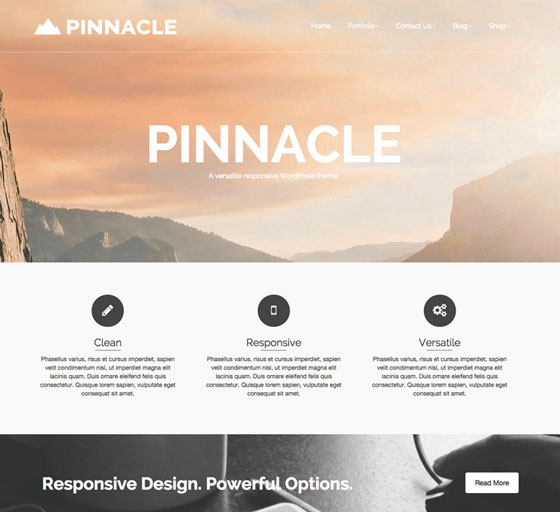 Pinnacle premium wordpress themes