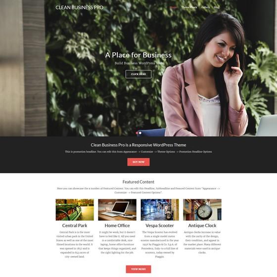 Clean Business premium wordpress themes