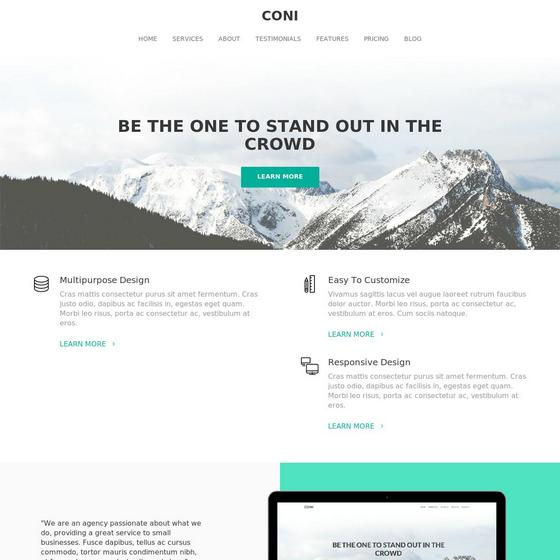 Coni premium wordpress themes