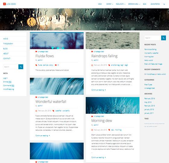 Fluida premium wordpress themes