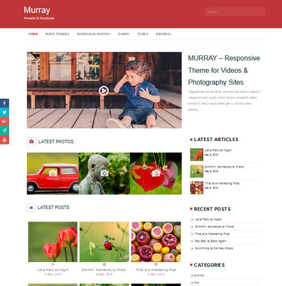 Murray premium wordpress themes