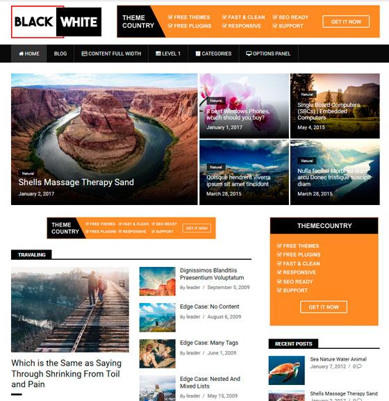 BlackWhite Lite premium wordpress themes