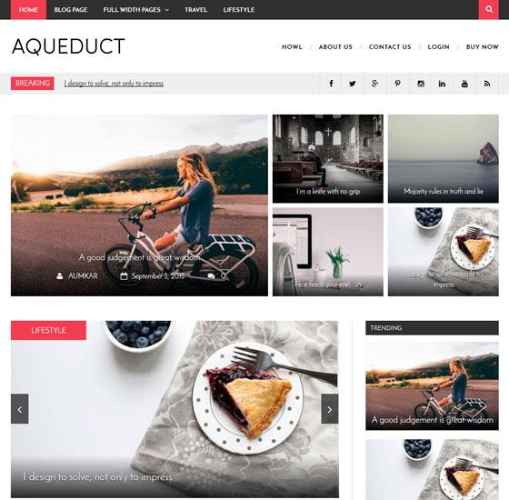 Aqueduct premium wordpress themes
