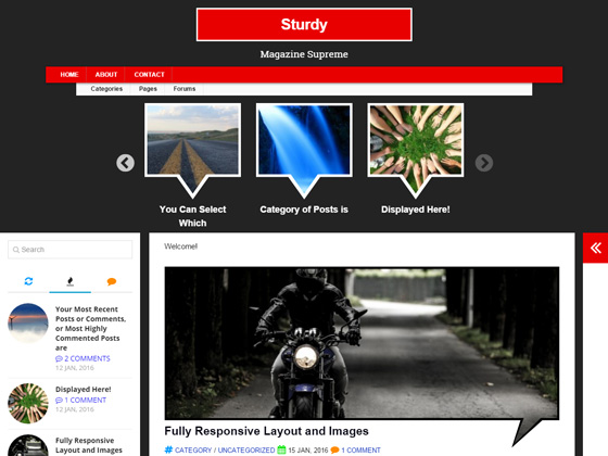 Sturdy premium wordpress themes