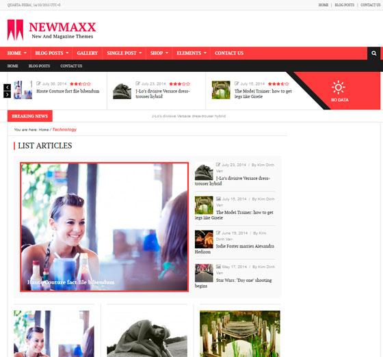 News Maxx — Lite premium wordpress themes