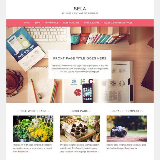 Sela premium wordpress themes