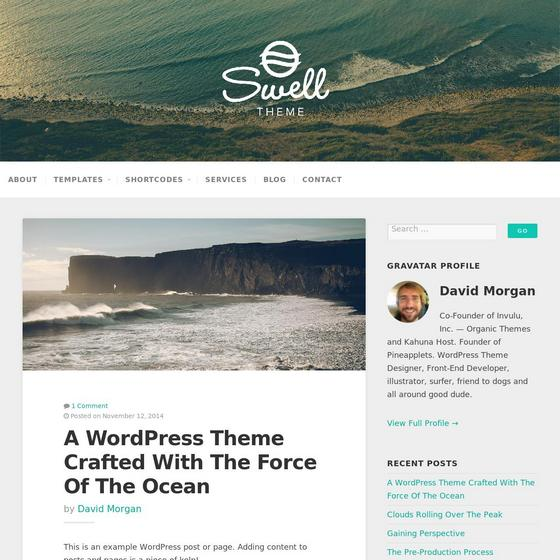 Swell Lite premium wordpress themes