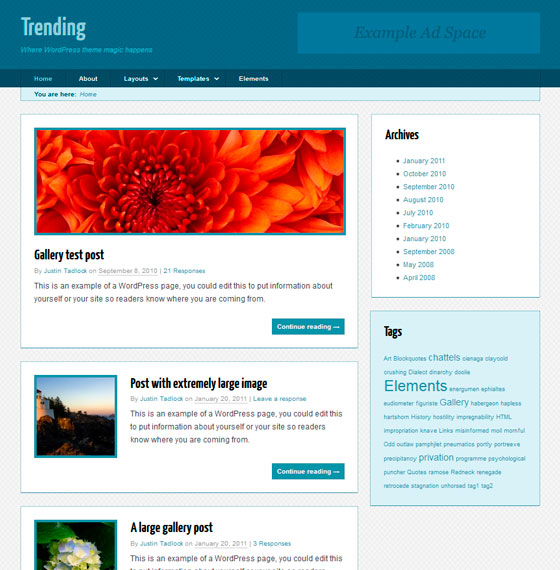 Trending premium wordpress themes