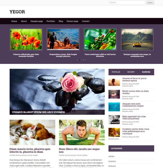 Yegor premium wordpress themes
