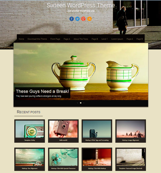 Sixteen premium wordpress themes