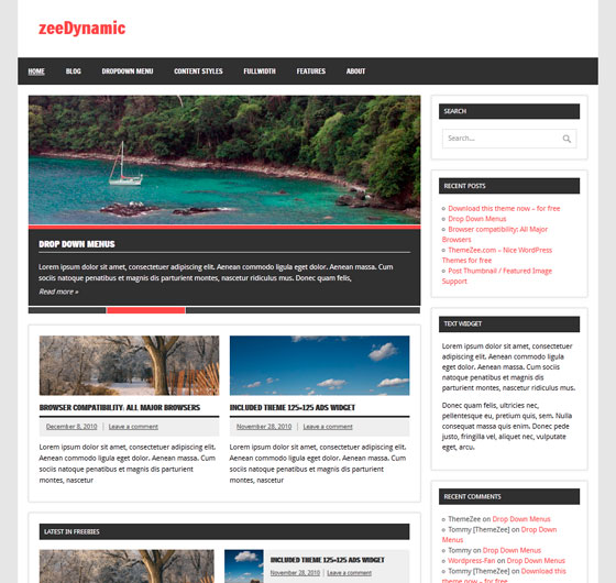 zeeDynamic premium wordpress themes