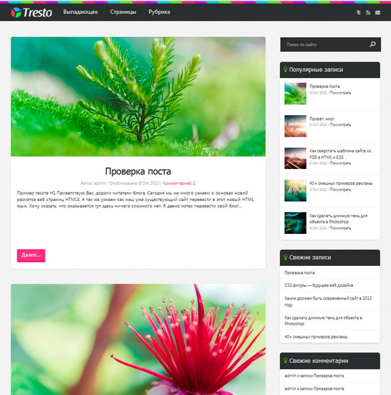 Tresto premium wordpress themes