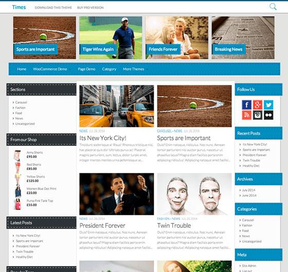 Times premium wordpress themes