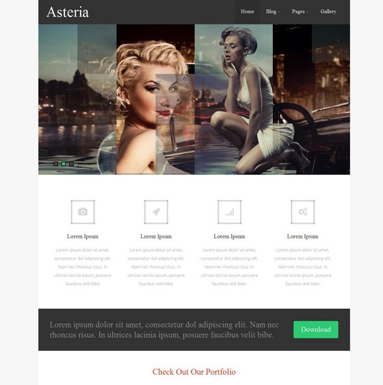 Asteria Lite premium wordpress themes