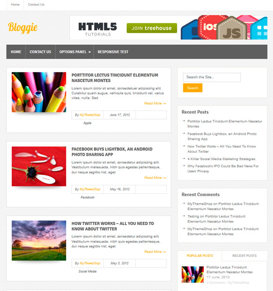 Bloggie premium wordpress themes