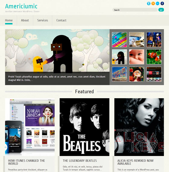 Americiumic premium wordpress themes
