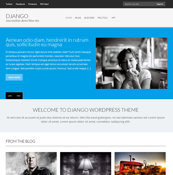 Django premium wordpress themes