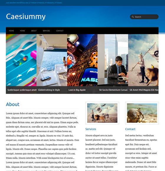 Caesiummy premium wordpress themes
