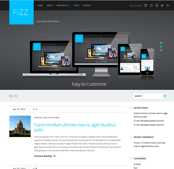 Fizz premium wordpress themes
