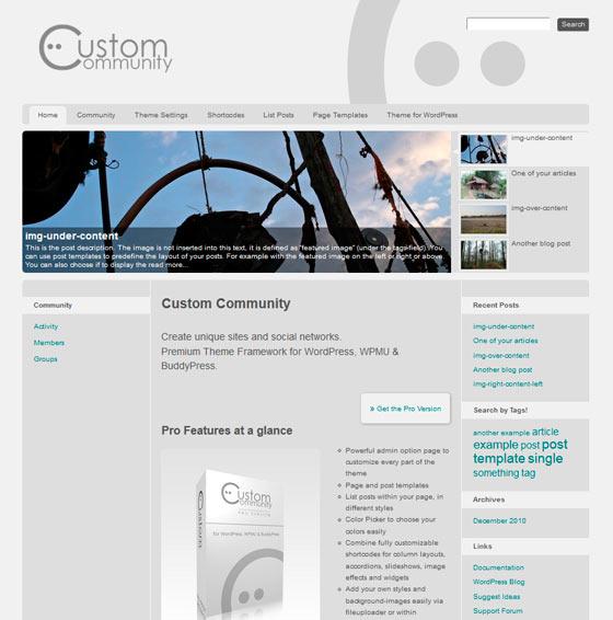 Custom Community premium wordpress themes